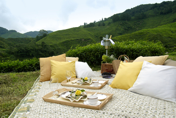 Best Hotel In Cameron Highlands For Honeymoon