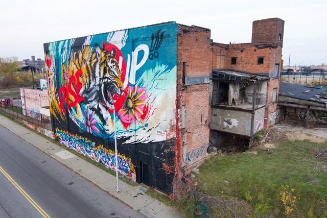 Tiger6.Sal Rodriguezjpg