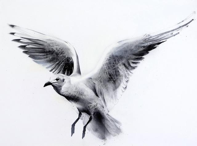 Flight (Gull-Laridae)-1