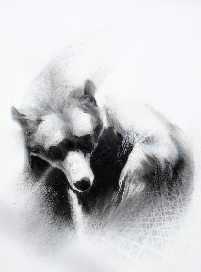 Search (Grizzly Bear- Ursus arctos)-1