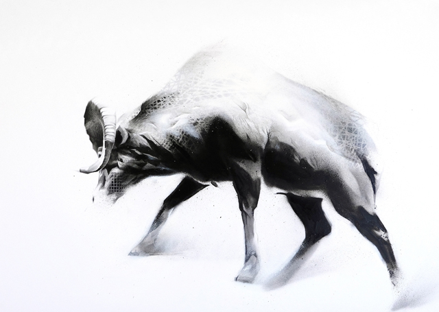 Steady (Bighorn Sheep-Ovis canadensis)-1