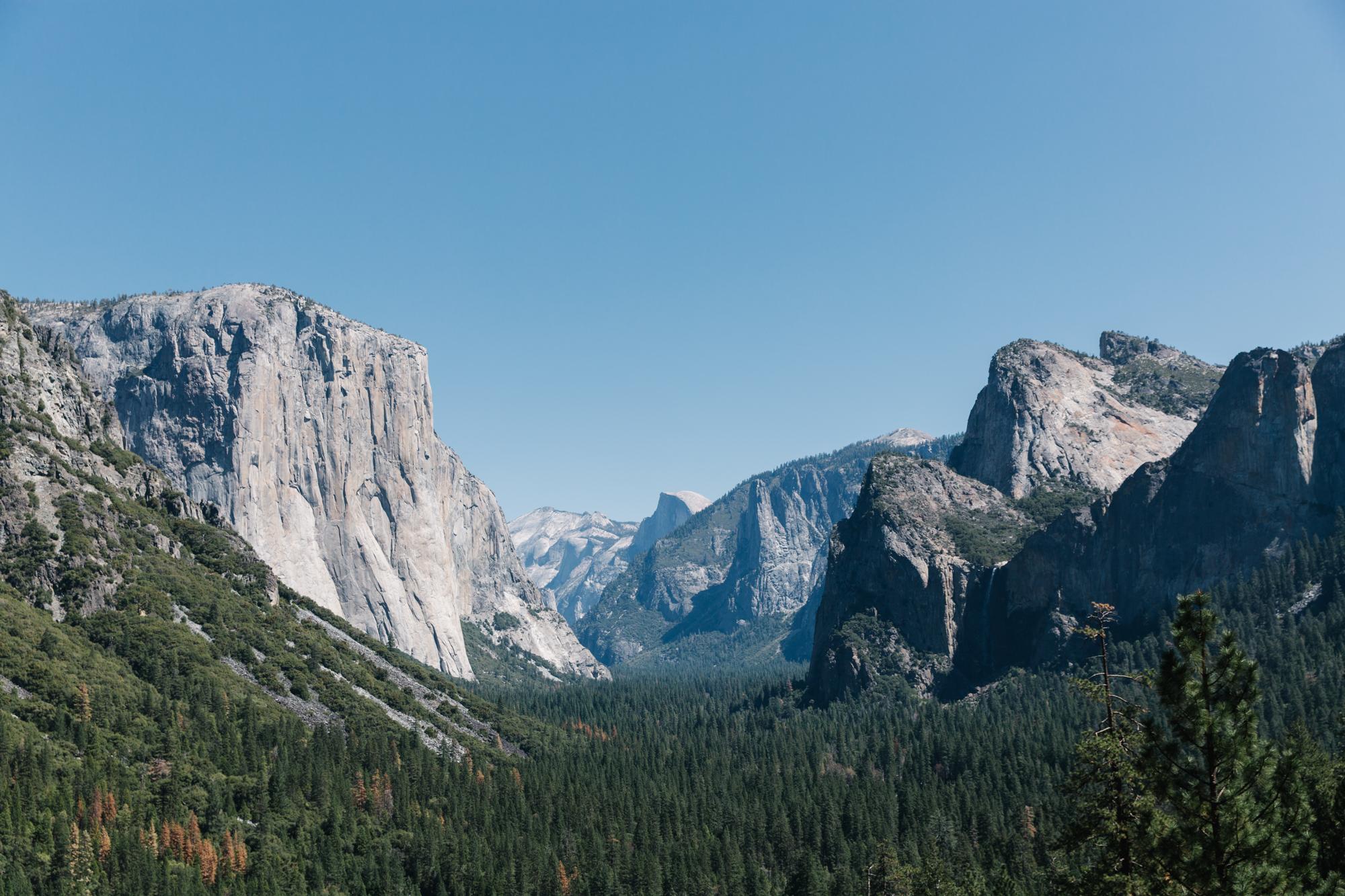 LiveFast_Yosemite_LauraAustin_0521