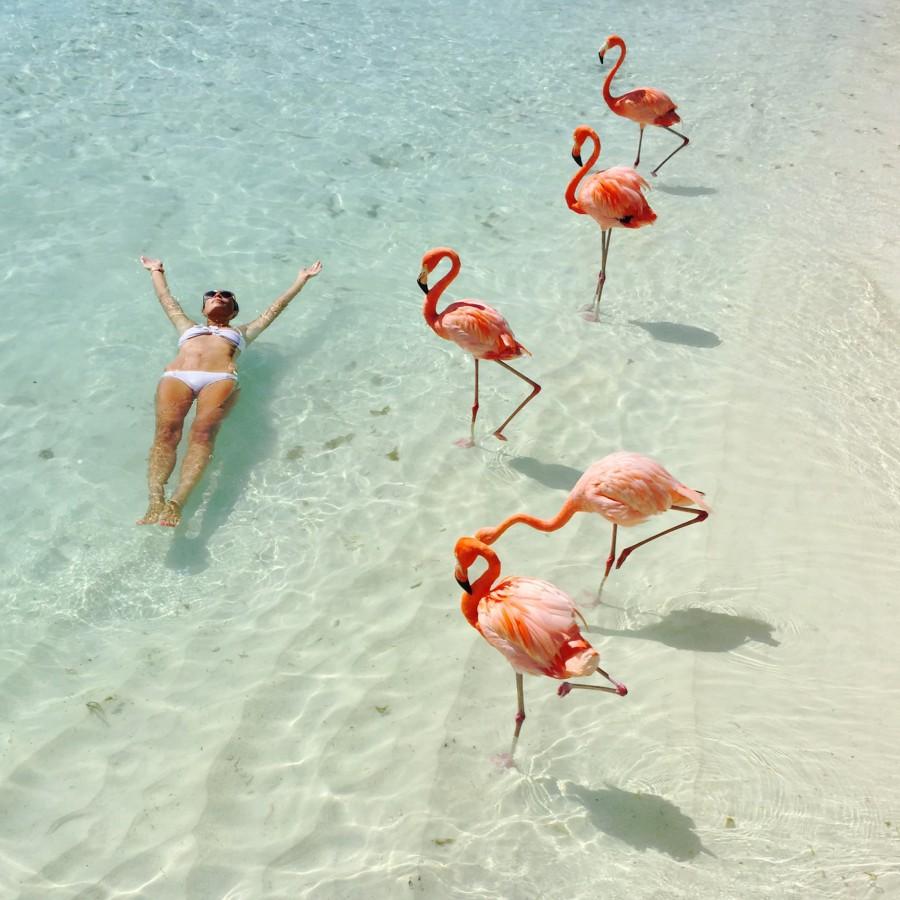 100GramsOfSun-Flamingo-Island-Aruba-1