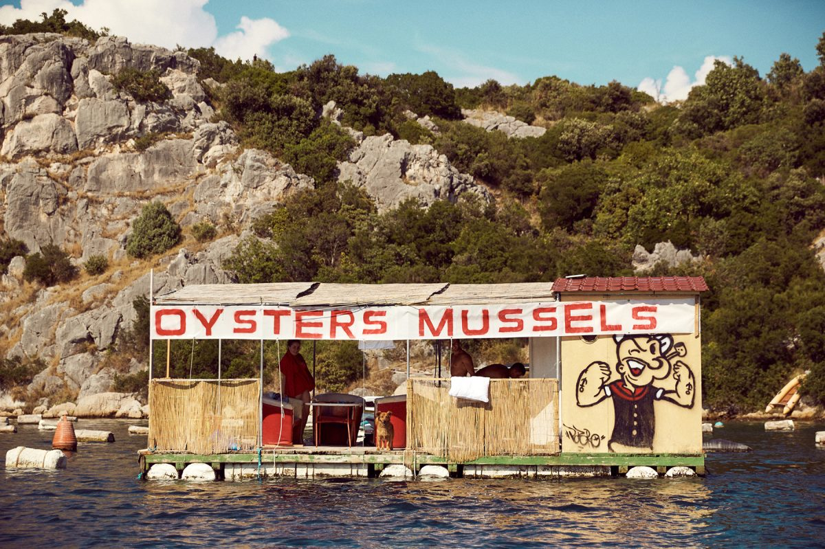 Above: Drive-thru oysters & mussels on the Adriatic Sea