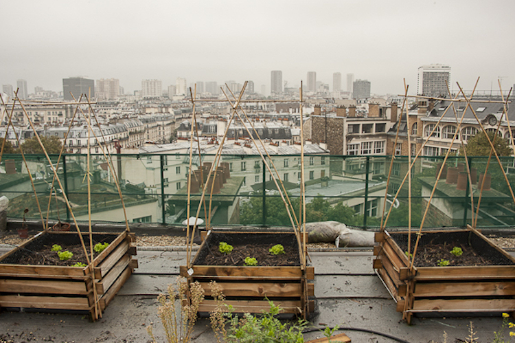 parisurbangardens4