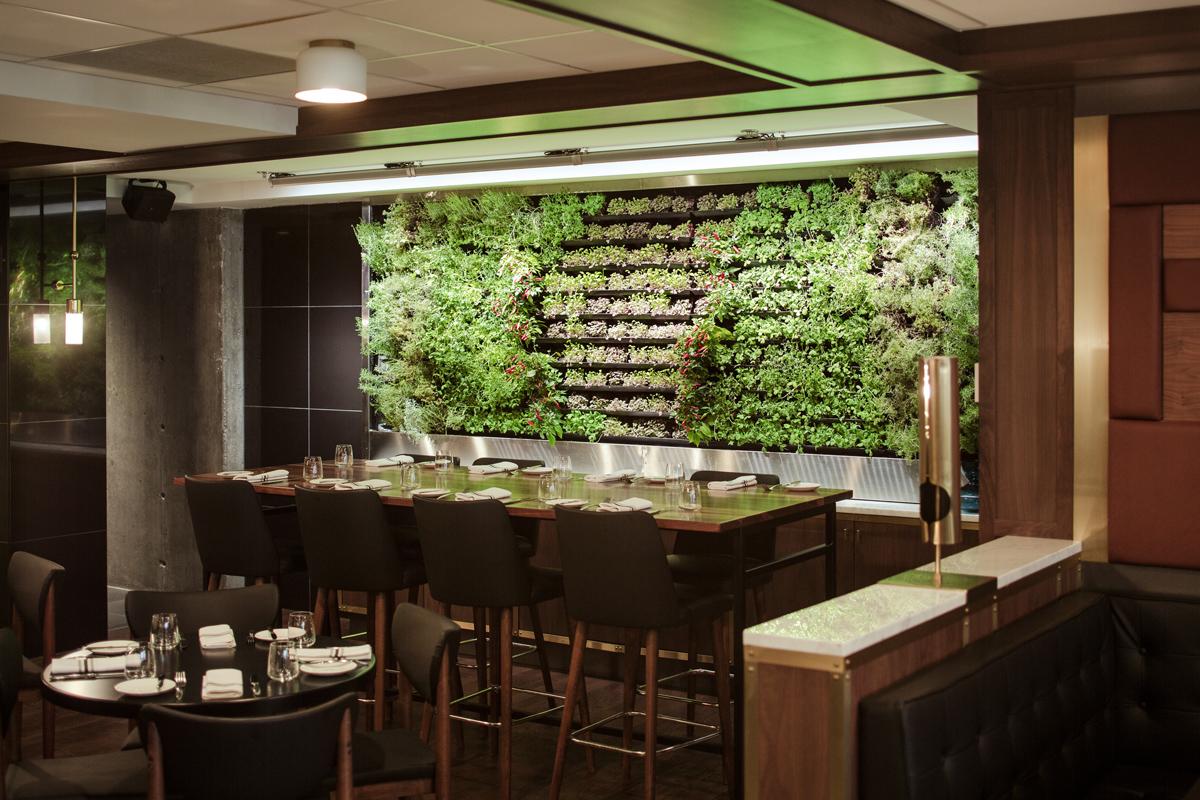 Maggie Oakes-Mur de verdure